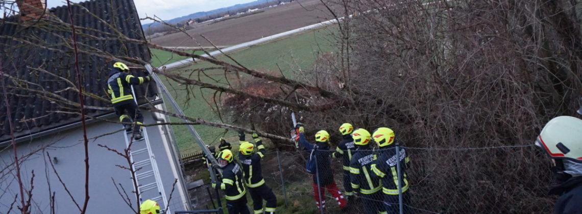 Sturmeinsatz: Baum auf Hausdach gestürzt