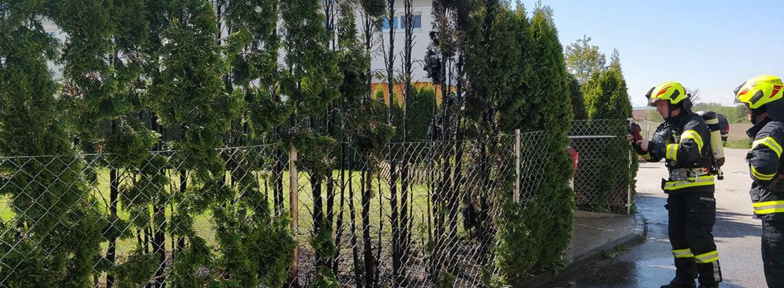 Brand einer Hecke im Ortskern von Feldkirchen